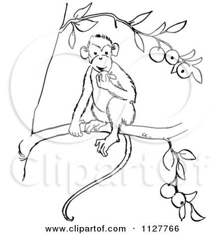 Cartoon Of A Retro Vintage Black And White Monkey Eating Fruit In A Tree Line Drawing - Royalty Free Vector Clipart by Picsburg