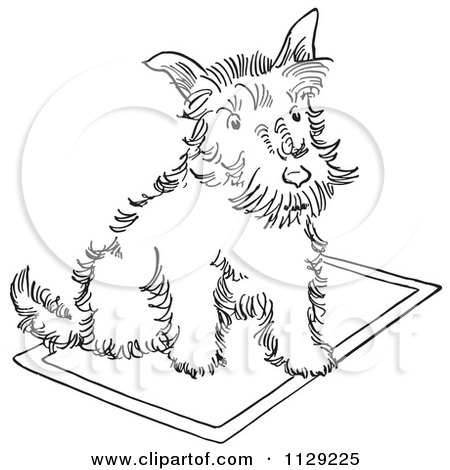Cartoon Clipart Of An Outlined Scottie Dog On A Rug - Black And White Vector Coloring Page by Picsburg