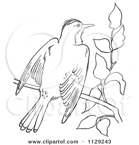 Cartoon Of A Retro Vintage Black And White Mockingbird In