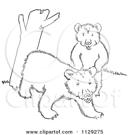 Cartoon Clipart Of Outlined Playful Bear Cubs By A Tree Trunk - Black And White Vector Coloring Page by Picsburg