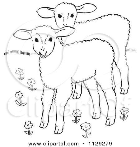 Cartoon Clipart Of Outlined Lambs In A Flower Field - Black And White Vector Coloring Page by Picsburg