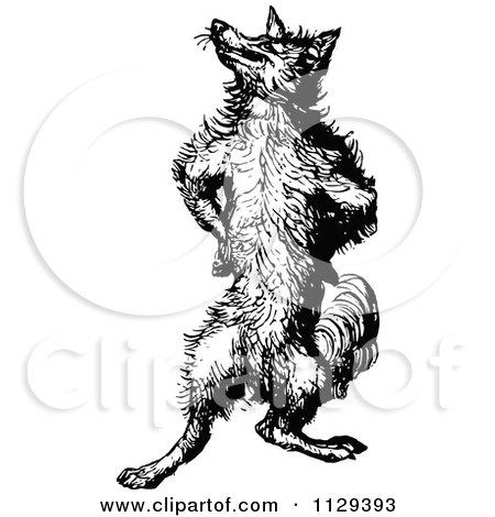 Clipart Of A Retro Vintage Black And White Fox Standing Upright And Posing - Royalty Free Vector Illustration by Prawny Vintage