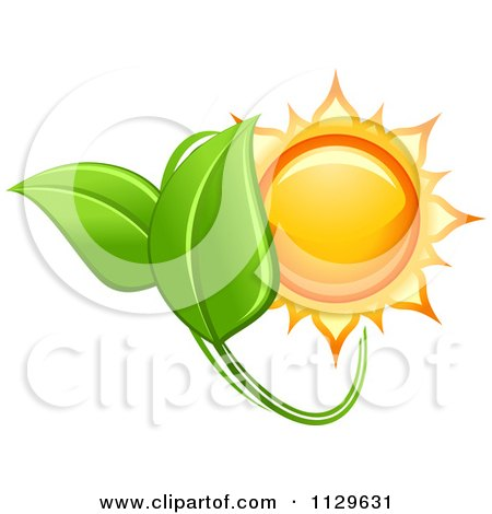 Clipart Of A Shiny Sun And Green Leaves - Royalty Free Vector Illustration by Vector Tradition SM