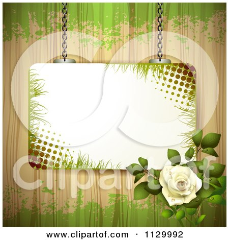 Clipart Of A Frame White Rose Flower And Wood Background With Grunge - Royalty Free Vector Illustration by merlinul