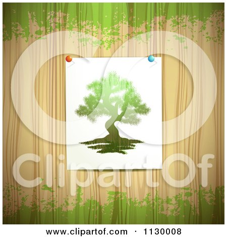 Clipart Of A Picture Of A Tree Tacked To Wood With Green Grunge - Royalty Free Vector Illustration by merlinul