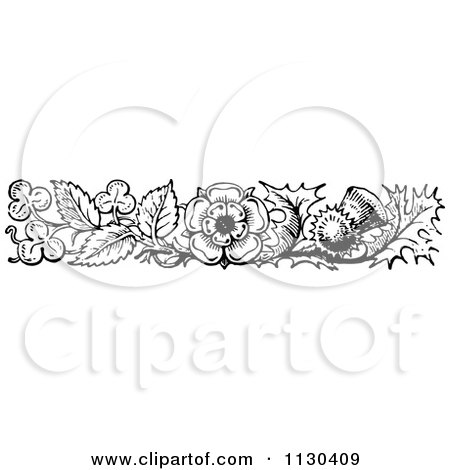 Royalty-Free (RF) Thistle Clipart, Illustrations, Vector Graphics #1