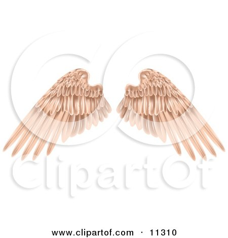 Flesh Colored Angel Wings Clipart Picture