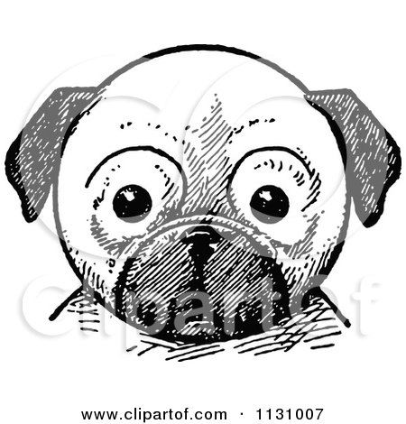 Clipart Of A Retro Vintage Black And White Pug Dog Face - Royalty Free Vector Illustration by Prawny Vintage
