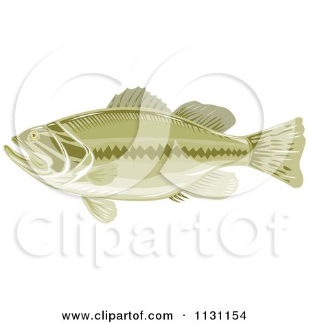 Clipart Of A Retro Green Largemouth Bass Fish In Profile - Royalty Free Vector Illustration by patrimonio