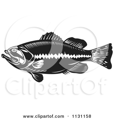 Clipart Of A Retro Black And White Largemouth Bass Fish In Profile - Royalty Free Vector Illustration by patrimonio