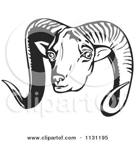 Clipart Of A Retro Black And White Argali Head - Royalty Free Vector Illustration by patrimonio
