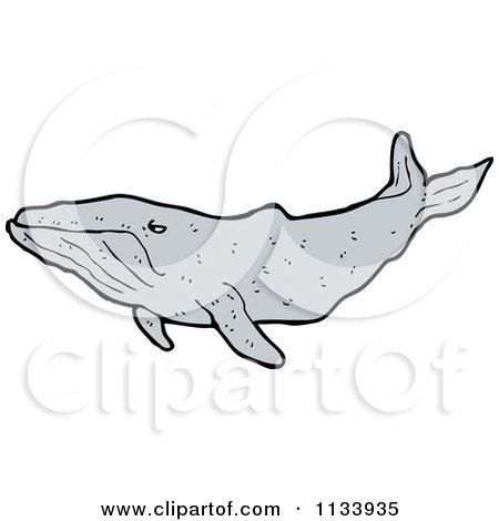 Cartoon Of A Humpback Whale - Royalty Free Vector Clipart by lineartestpilot