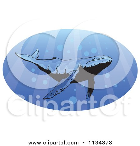 Clipart Of A Humpback Whale Swimming With Rays Of Light - Royalty Free Vector Illustration by YUHAIZAN YUNUS
