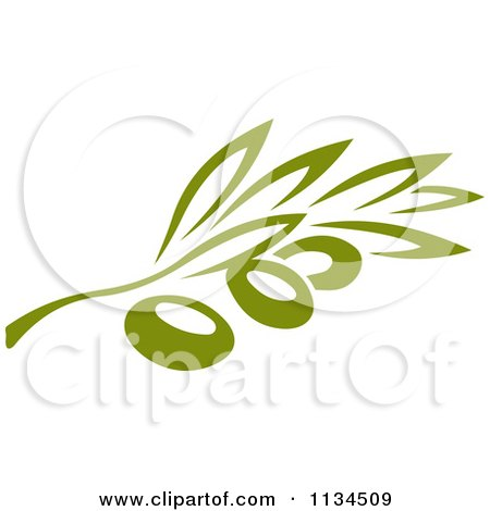 Clipart Of A Green Olive Branch 3 - Royalty Free Vector Illustration by Vector Tradition SM