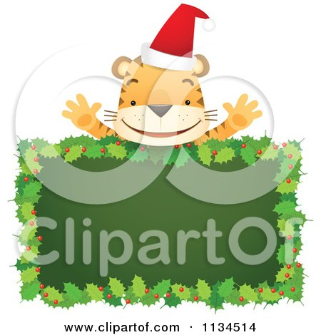 Cartoon Of A Happy Christmas Tiger Over A Holly Sign - Royalty Free Vector Clipart by Qiun