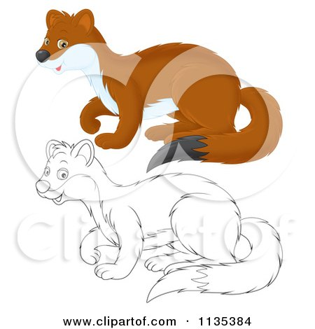 Cartoon Of A Cute Outlined And Colored Weasel - Royalty Free Vector Clipart by Alex Bannykh