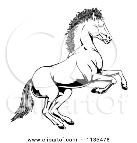 Clipart Of A Black And White Rearing Horse - Royalty Free Vector Illustration by AtStockIllustration