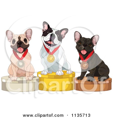 Cartoon Of Cute Show French Bulldogs On Placement Podiums - Royalty Free Vector Clipart by Pushkin