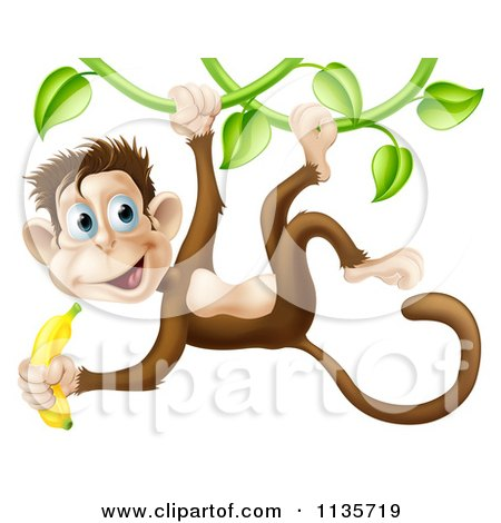 Cartoon Of A Monkey Hanging From A Vine And Holding A Banana - Royalty Free Vector Clipart by AtStockIllustration