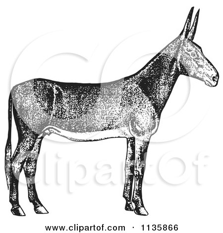 Clipart Of A Retro Vintage Poitou Donkey Ass In Black And White - Royalty Free Vector Illustration by Picsburg