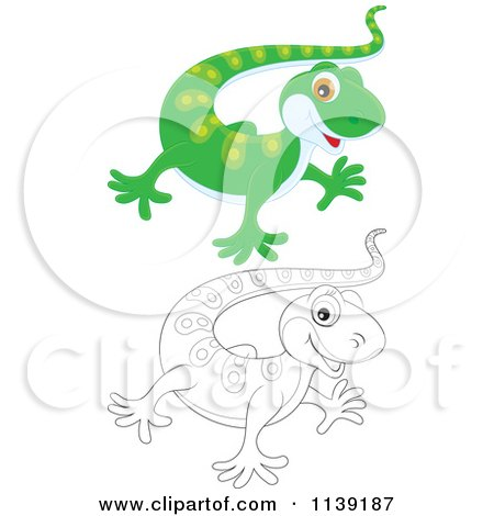 Cartoon Of A Cute Green And Black And White Baby Gecko - Royalty Free Vector Clipart by Alex Bannykh