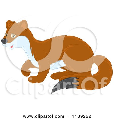 Cartoon Of A Cute Brown And White Weasel - Royalty Free Vector Clipart by Alex Bannykh