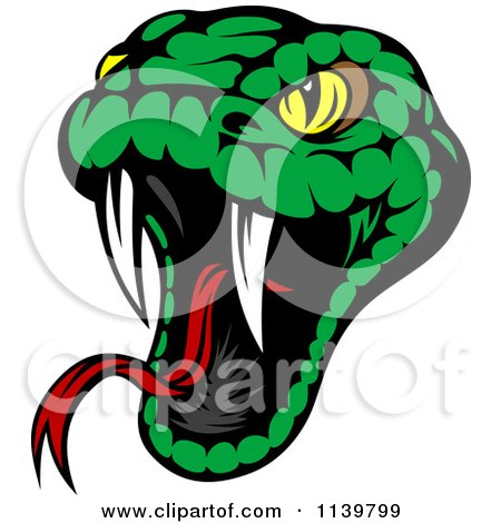 You may also like these Viper Viper Snake Head