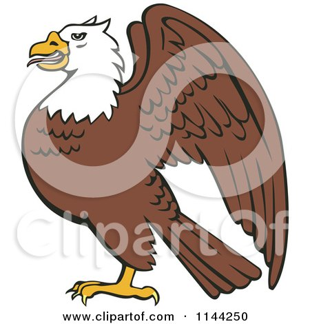 Clipart of a Bald Eagle in Profile - Royalty Free Vector Illustration by patrimonio
