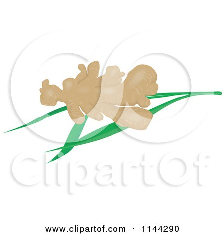 Clipart of Ginger Root over Leaves - Royalty Free Vector Illustration by patrimonio
