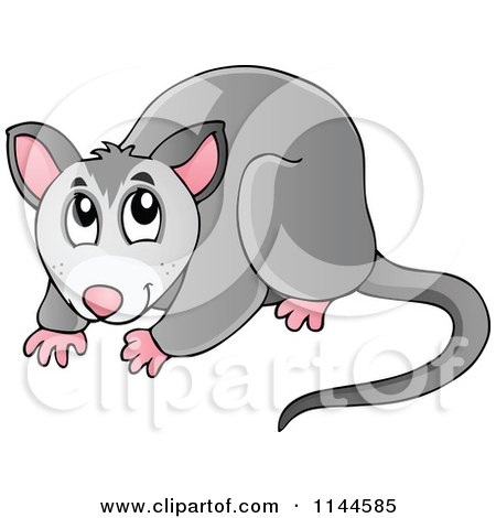 Royalty-Free (RF) Clipart of Australian Animals, Illustrations ...