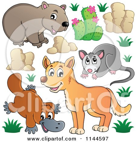 Cartoon of a Cute Aussie Dingo Platupus Wombat and Possum with Plants and Boulders - Royalty Free Vector Clipart by visekart