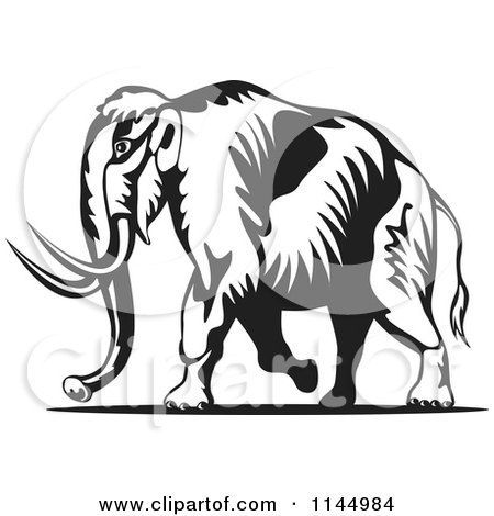 Clipart of a Retro Black and White Walking Wooly Mammoth - Royalty Free Vector Illustration by patrimonio