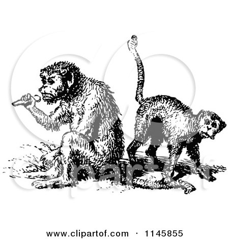 Clipart of a Black and White Vintage Monkey Playing Music ...