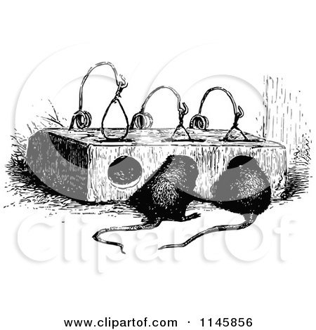 Retro Vintage Black and White Mouse Trap and Mice Posters, Art Prints