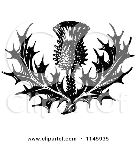 Clipart of a Retro Vintage Black and White Thistle Flower - Royalty Free Vector Illustration by Prawny Vintage