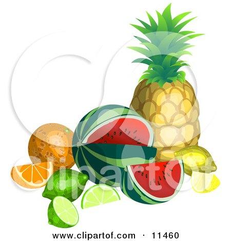Still Life of Tropical Fruits, Pineapple, Watermelon, Lemon, Lime, Orange Clipart Illustration by AtStockIllustration