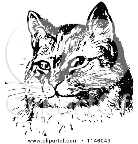 Clipart of a Retro Vintage Black and White Sitting Cat Face - Royalty Free Vector Illustration by Prawny Vintage