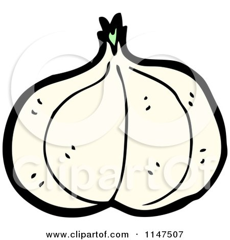 Cartoon of a Garlic Head - Royalty Free Vector Clipart by lineartestpilot