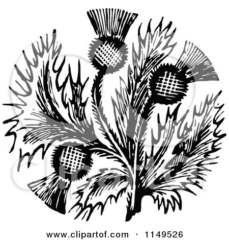 Clipart of Retro Vintage Black and White Thistle Flower - Royalty Free Vector Illustration by Prawny Vintage