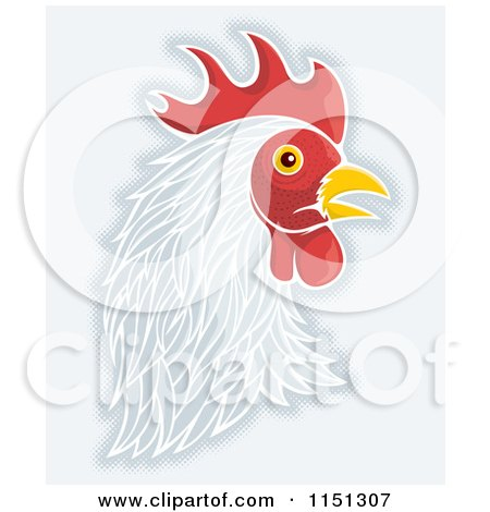 Cartoon of a White Rooster Head - Royalty Free Vector Clipart by Any Vector