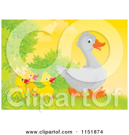 Cartoon of a Walking Goose and Chicks - Royalty Free Illustration by Alex Bannykh