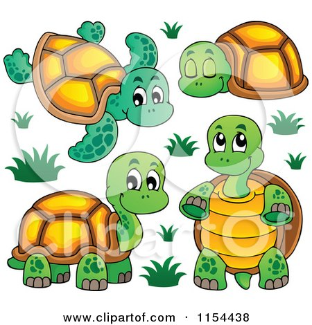 Cartoon of Cute Turtles - Royalty Free Vector Illustration ...