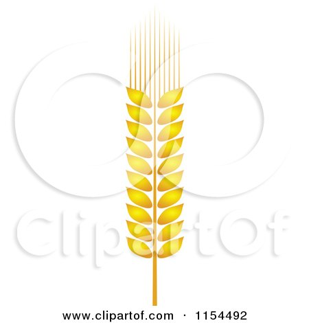 Clipart of a Whole Grain Ear 2 - Royalty Free Vector Illustration by Vector Tradition SM