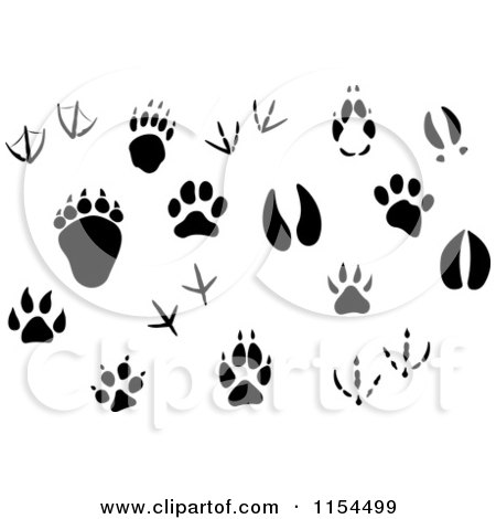 Jungle Animal Footprint Clipart on deer tracks