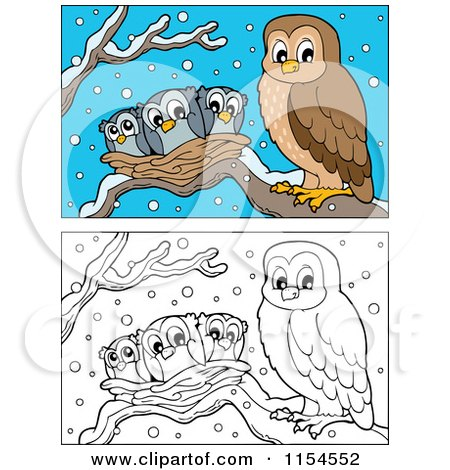 Cartoon of Outlined and Colored Owl and Chicks in a Nest - Royalty Free Vector Clipart by visekart