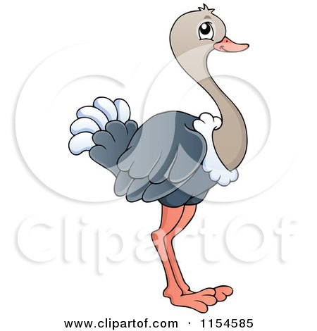 Royalty Free Rf Ostrich Clipart Illustrations Vector