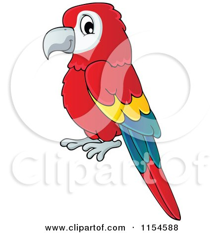 Cartoon of a Red Parrot - Royalty Free Vector Clipart by visekart