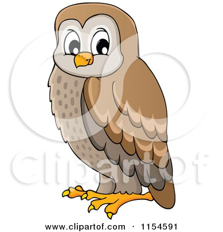 Cartoon of a Brown Owl - Royalty Free Vector Clipart by visekart