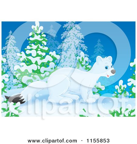 Cartoon of a Cute White Weasel in the Snow - Royalty Free Illustration by Alex Bannykh