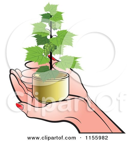 Clipart of a Pair of Hands Holding a Grape Vine Plant - Royalty Free Vector Illustration by Lal Perera